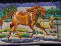wild-horses-bigfork-bay-smaller